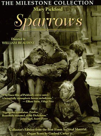 sparrows-l