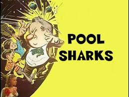 pool-sharks