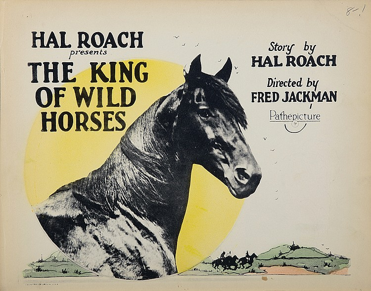 the king of the wildhorses
